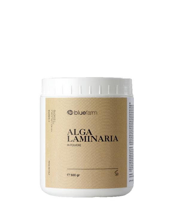 alga_laminaria_bluefarm